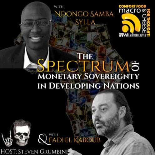 Episode 40 - The Spectrum of Monetary Sovereignty in Developing Nations with Ndongo Samba Sylla and Fadhel Kaboub