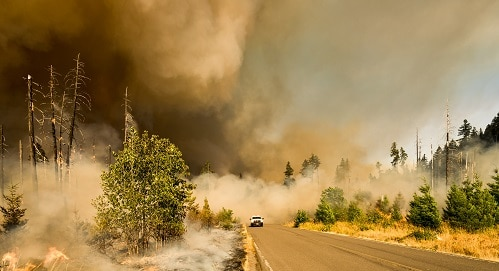 climate change war wildfires