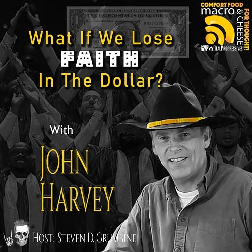 Episode 140 – What If We Lose Faith in the Dollar? with John Harvey